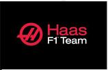 Haas F1 Team Logo Flag